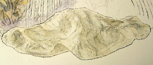 Linga Fossil Drawing 500x214 - Copy
