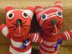 Kookies Sock Cats for Pancreatic Cancer UK