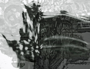 Digital Print on Silk(c) Ann Isik 2011
