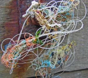Tangled Fishing Line St Margaret's Bay Kent