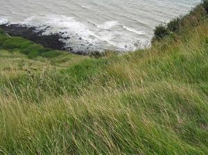 White Cliffs Beyond S Foreland Lighthouse St Margaret's Kent