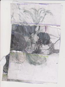 Drawing, Torcay