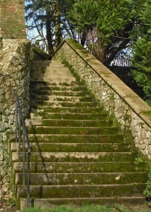 I like the mystery of steps