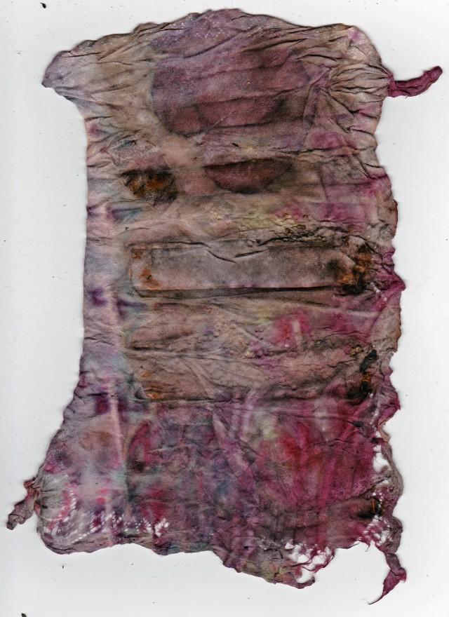 Fabric Softener Eco Print I     Side I 18 November 2014