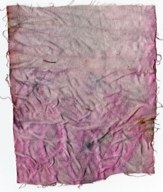 Pink and Sari Silk Eco Print on Lining Fabric Side II 18 November 2014
