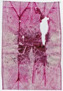 Teabag Herbal Pink VI 10 December 2014