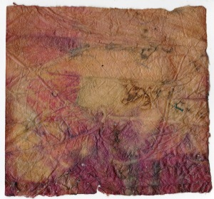 Eco Print Encaustic on Khadi Paper January 2015