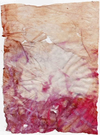 Eco Print on Unknown Fine Art Printing Paper II  Side I 29 December 2014