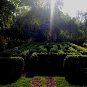 FF Prompt 6 February 2015 Garden Maze by Melanie Greenwood
