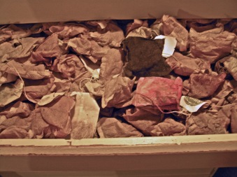 Teabag Drawer in Printer's Chest, Studio March 2015