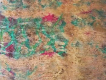 Eco Print on Rhubarb-Dyed Silk May 2015