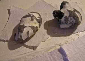 Plaster of Paris Pages with Black and White Flint Stones