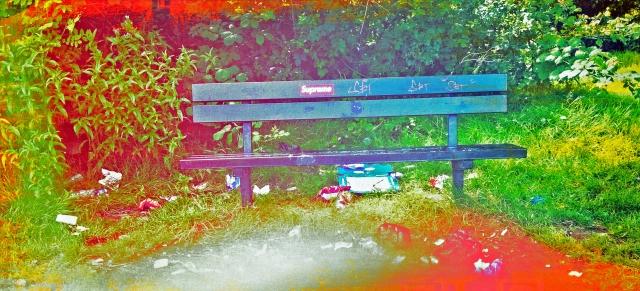 Park Seat July 2016