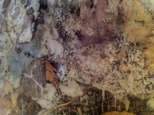 eco-print-ii-on-satin-silk-12-january-2017