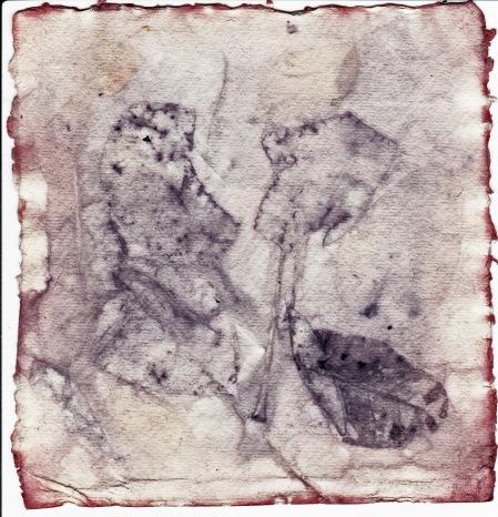 eco-print-with-madder-dye-on-khadi-paper-viii-16-january-2016