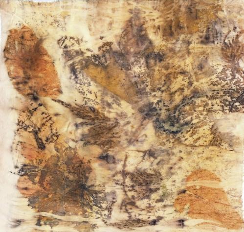 eco-print-iii-on-raw-silk-from-bursa-9-february-2017