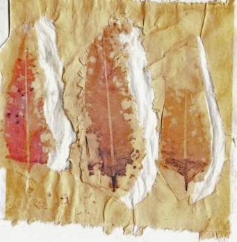 Eco Collograph V with Negative Spaces 22 January 2018
